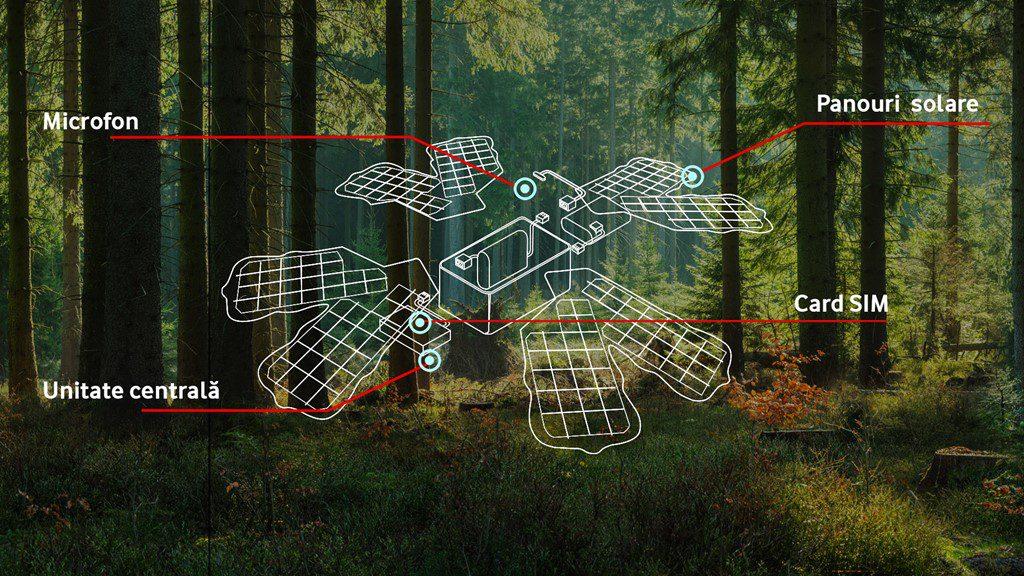 Pădure inteligentă