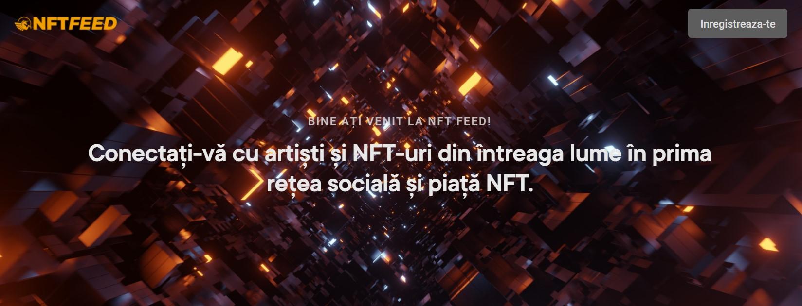 nft feed
